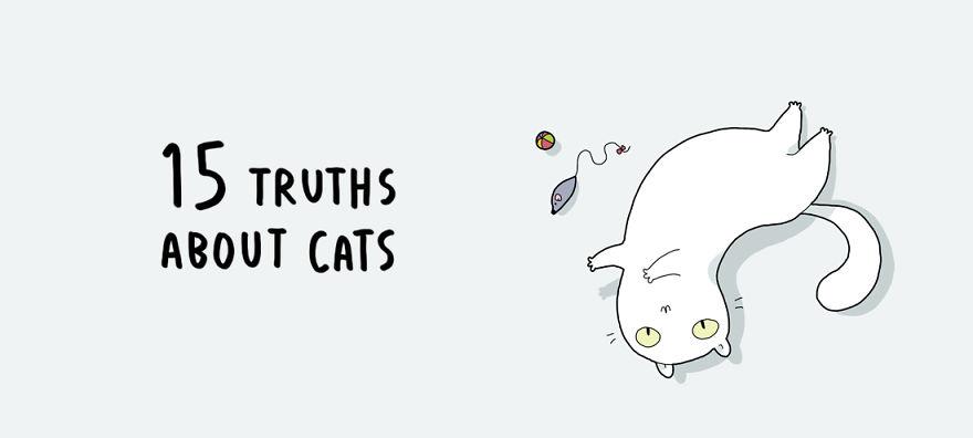 cat-doodles-001__880