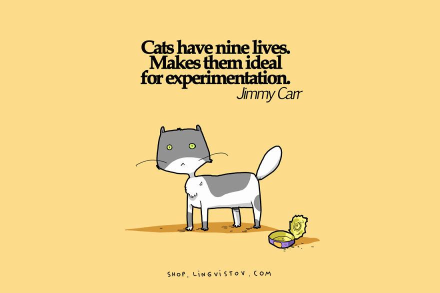 cat-doodles-013_8_880