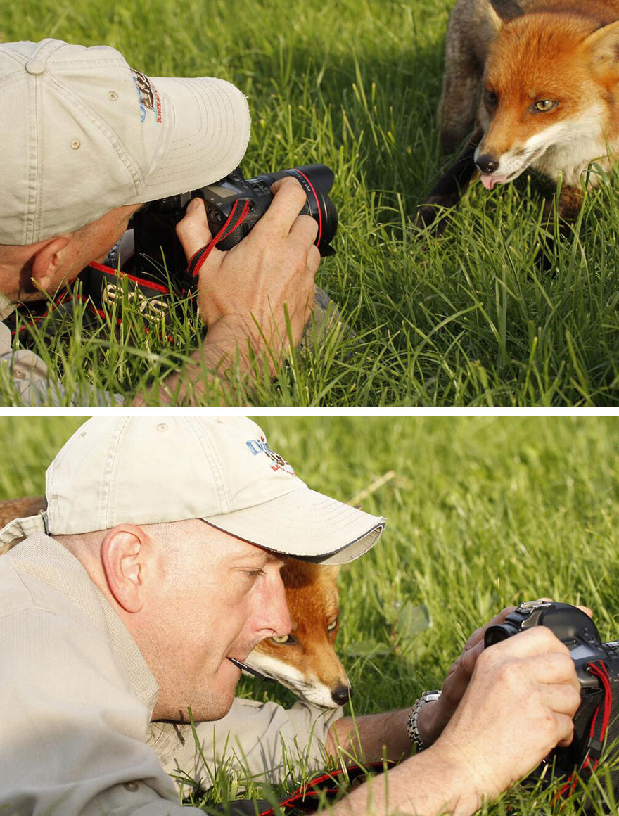 animals-with-camera-helping-photographers-31__880