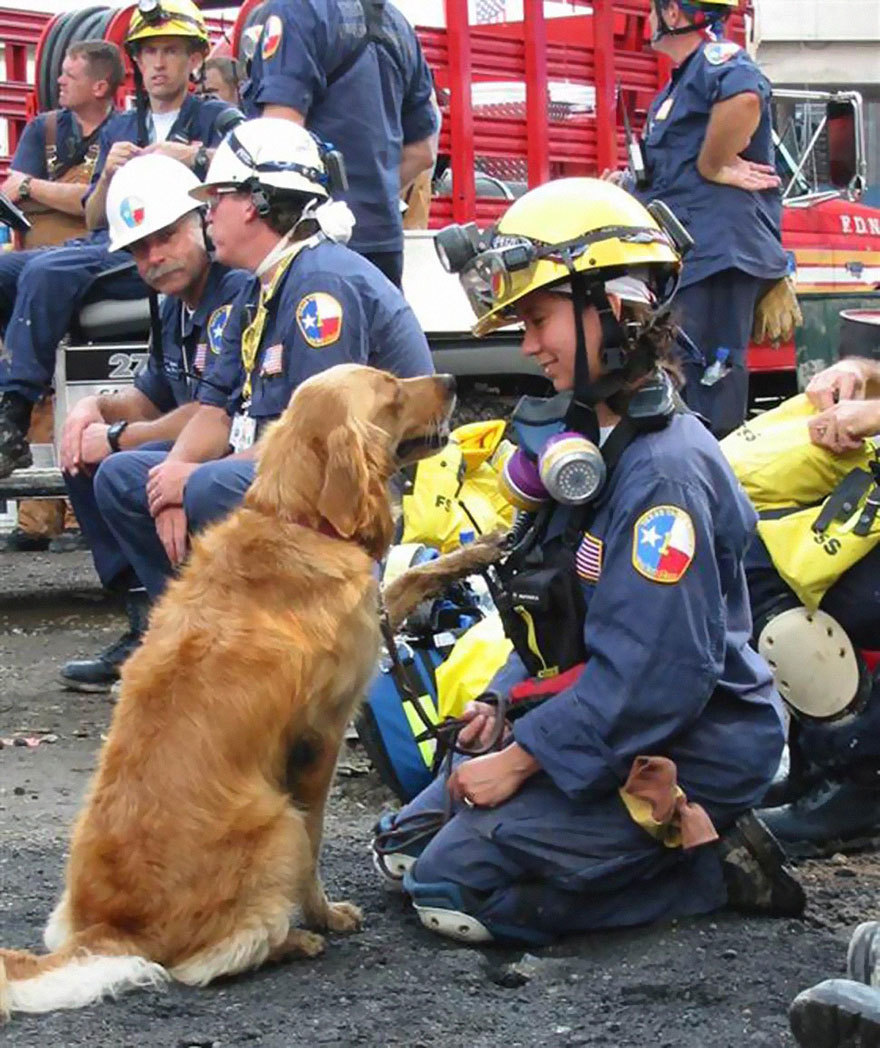 last-9-11-rescue-dog-birthday-party-new-york-bretagne-denise-corliss-7