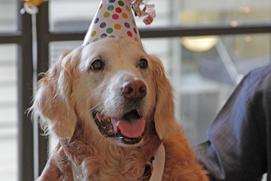 last-9-11-rescue-dog-birthday-party-new-york-bretagne-denise-corliss-4